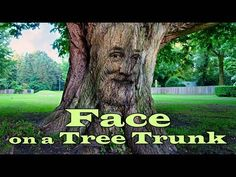 Photoshop: How to Create a Face on a Tree. Photoshop Tutorial, Photoshop Face, Photoshop Tips, Create A Face, Copyright Free Music, Photo Manipulation, Free Stock Photos, How To Become, Youtube
