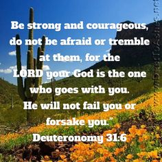 Deuteronomy Be strong and courageous, do not be afraid or tremble at them, for the LORD your God is the one who goes with you. Bible Verses Quotes Inspirational, Scripture Verses, Religious Quotes, Bible Scriptures, Faith Quotes, Bible Quotes, Bible Mapping, Christian Warrior, New American Standard Bible