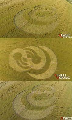 Crop Circle at Cava Manara (Pavia). Italy. Reported 8th June 2013
