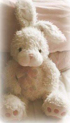 stuffed bunny...