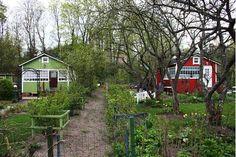 Herttoniemen siirtolapuutarha, Helsinki