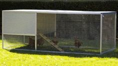The Chicken Castle Royale houses up to 10 chickens and is a popular choice of backyard chicken coop. Mobile Chicken Coop, Easy Chicken Coop, Chicken Coop Designs, Chicken Runs, Small Chicken, Poultry House, Backyard Poultry, Backyard Chicken Coops, Chickens Backyard