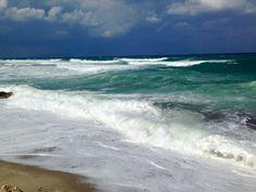 Mitsis Laguna Beach