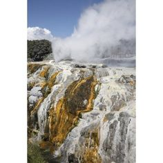 Pohutu and Prince of Wales Feathers Geyser Whakarewarewa Rotorua New Zealand Canvas Art - Richard RoscoeStocktrek Images (23 x 35)