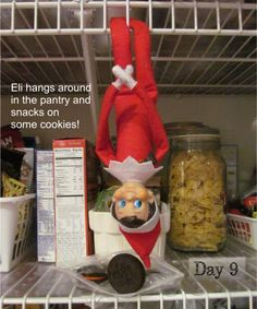 Ei the elf hanging out in the pantry