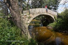Puente medieval de Chuy sobre el río Corneja. Bonilla de la Sierra. Ávila. Castilla y León. España © Javier Prieto Gallego
