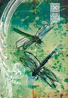 Narelle Craven - dragonfly painting in teal blue, turquoise & green