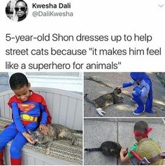 He's both the hero kittens deserve AND the one they need (x post from r/blackpeopletwitter) : HumansBeingBros