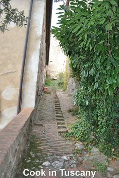 Walking path in Montefollonico  www.cookintuscany.com   #tuscany #montefollonico #cookintuscany #Italy #cookingschool #culinary #cooking #school #montepulciano #cookery #cucina #travel #tour #trip #vacation #pienza #cook #tuscan #cortona #allinclusive