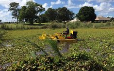 Photo Gallery | Pond Cleaning Services | Aquatic Weed Control Pond Weed, Pond Cleaning, Electrical Problems, Weed Control, Location Map, West Palm Beach, Heavy Equipment, Photo Galleries, Boat