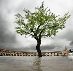 Splendida foto di Paolo Gamelli - Rotonda di Badoere - La Pioggia (http://www.gamelli.it) #RotoTonda #SummerJam