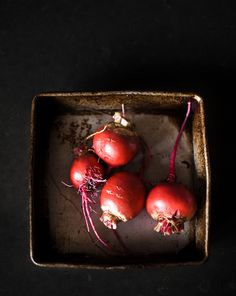 chioggia beets from the yard. (by mattyinthesun)