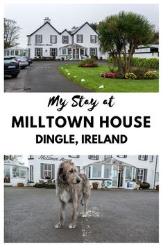 Dingle Accommodation: My Stay at Milltown House   Dingle, Ireland   Dingle Peninsula Hotel #irelandtravel