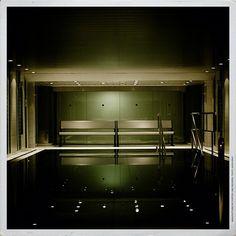 Alterspaa. Bathtub, Bathroom, Daffodils, Standing Bath, Bath Room, Bath Tub, Bathrooms, Bathtubs, Bath
