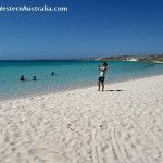 Guide to easy safe snorkeling at Bill's Bay (Coral Bay's town beach) in the Ningaloo Marine Park. See coral and tropical fish close to shore. Australia Travel, Western Australia, Tropical Fish, Snorkeling, Coral, Park, Beach, Water, Outdoor