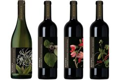 Botanica Wines #SouthAfrica botanical collages by Mary Delany