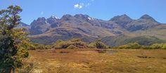Highway_Milford_Sound_Neuseeland-erleben-info_25