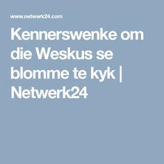 Kennerswenke om die Weskus se blomme te kyk | Netwerk24