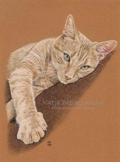 Katzenportrait - 30 x 40 cm https://www.facebook.com/Portraits.und.mehr.nach.Fotovorlage