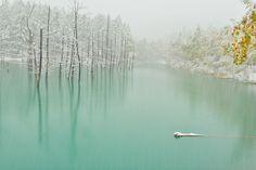 First snow on the green pond, Hokkaido, Japan - Photo Kent Shiraishi