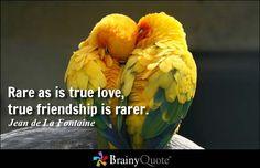 Rare as is true love, true friendship is rarer. - Jean de La Fontaine #love #friendship #QOTD