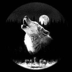 одинокий волк - Поиск в Google