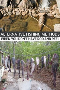 Fishing Methods – When You Don't Have Rod and Reel - This article offers some ways to catch fish without a rod and reel. You will be surprised to find out how many ways you can get this done.Alternative Fishing Methods – When You Don't Have Rod and Reel - Survival Fishing, Survival Food, Homestead Survival, Wilderness Survival, Camping Survival, Outdoor Survival, Survival Knife, Survival Prepping, Fishing Tips