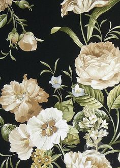 Painting of mixed flowers, cream and pale blue on a black background. Roses, campanula and hibiscus?