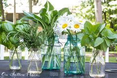 Simple Arrangements Using Garden Flowers & Herbs | Includes list of herbs that pair nicely with garden flowers. Lots of tips and ideas!