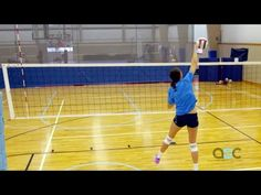 Hitting Tips - Terry Liskevych - The Art of Coaching Volleyball - YouTube