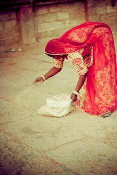 Bird Feeder, Adalaj, Gujarat, India