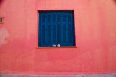 https://www.flickr.com/photos/137043092@N05/shares/hxC4E8 | Photos de atilla inan
