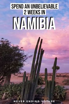 Here's how to plan the perfect Namibia road trip! Slow Travel, Travel Tips, Digital Nomad, Africa Travel, Amazing Places, Trip Planning, The Good Place, Road Trip, Journey