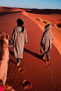 Morocco - Sahara: Desert Guide by John & Tina Reid on Flickr.