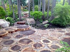 Landscaping Around Trees, Backyard Landscaping, Landscaping Ideas, Backyard Patio, Backyard Seating, Natural Landscaping, Large Backyard, Garden Design Pictures, Traditional Landscape