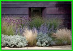 Front Yard Landscaping Ideas: Our simple flower Bed ... *** Get this valuable article by going to the link at the image. Xeriscape Front Yard, Pool Landscaping, Xeriscape, Grasses Landscaping, Small Gardens, Urban Garden, Landscaping With Rocks, Ornamental Grass Landscape, Beautiful Gardens