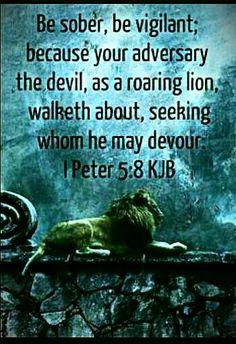 Amen~ One of my favorite verses! Be vigilant!