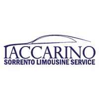 Private tours to Positano on the Amalfi Coast with English speaking drivers of Iaccarino Sorrento Limousine Service in luxury Mercedes vehicles of various sizes