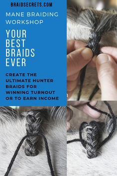 Tired of mediocre braids limiting your turnout? Learn the tricks of the trade for crafting the perfect hunter or dressage braids on your horse for successful shows. Or earn income braiding. You'll transform your mane braids from novice to expert status with this key knowledge. Click through to view my video message about what you'll learn in the workshop. #manebraidingtutorials, #perfectmanebraids