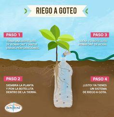 Tuminihuerto sistema de riego por goteo casero autom tico for Riego por goteo casero