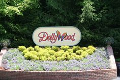 DollyWood and Dollywood Splash Country - where our kids experience the need for speed! R and K are roller coaster maniacs!
