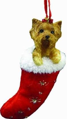 Announcing the newest holiday tree trend! These Yorkie Christmas stocking ornaments measure 4 inches tall and 2 inches wide. Every ornament is hand painted with a tiny brush to really accentuate each and every detail of the Yorkie. There are bright gold snowflakes and clear sparkling beads embroidered on the soft red felt stocking giving it that Christmas glitz and glamour. It's a full bodied dog inside with the Yorkies head and paws are peeking