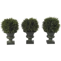 """Nearly Natural 9"""" Cedar Ball Topiary (Set of 3) featuring polyvore, home, home decor, floral decor, plants, filler, nearly natural, whimsical home decor and ball topiary"""