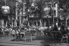 1972. A view of the terras at the Leidseplein in Amsterdam. #amsterdam #1972 #Leidseplein