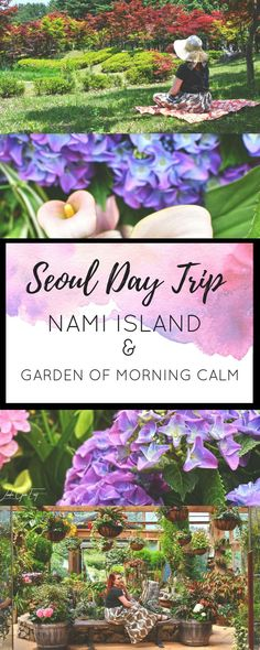 Nami Island and The Garden Of The Morning Calm With Trazy Korea