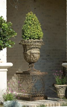 Beautiful urn (and I think I can do a bit better with topiary!)