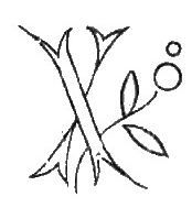 """Broderie D'Antan: Embroidery Patterns (22 Monograms for """"X"""")"""