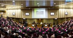 [US Catholic bishops try to calm  anxiety over pope  yhoo.it  ] America's #Catholic #bishops came  together Monday to project an image of  unity, after 3 #Vatican meeting on the family  unleashed an uproar over the direction of  the church under #PopeFrancis.