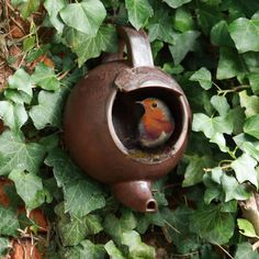 Teapot nester. Perfect for robins who prefer open nesting sites and often use man made objects. Place it within some greenery, 1-2 metres high. Secure the teapot using either malleable garden wire, passing it through the specially designed fixing holes and around the base of the handle, twist around a convienient branch or screw to a support through the hole in the base , taking care to only gently tighten against the included rubber washer. Purchase from Natural Collection
