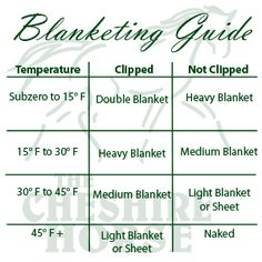 Unsure which blanket to use on your horse? Check out this handy Horse Blanketing Guide from The Cheshire Horse! ~ Always a handy thing to know My Horse, Horse Love, Horse Feed, Crazy Horse, Landscape Arquitecture, Horse Information, Horse Care Tips, Horse Anatomy, Horse Facts